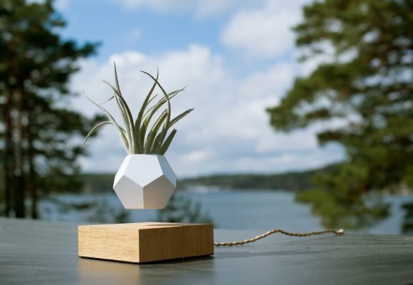 Make your plants dance