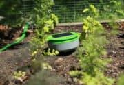 Tertill garden-weeding robot